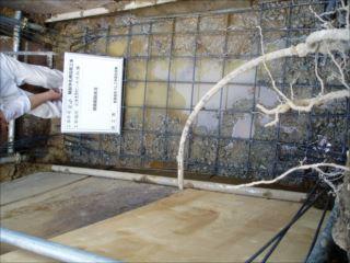 合併浄化槽設置工事前の画像